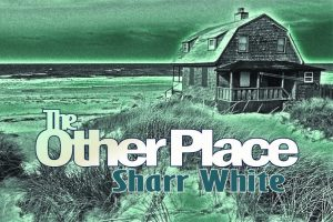 DTG_The Other Place logo