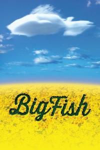 NKU_Big Fish logo