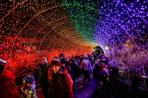 CZ_Festival of Lights