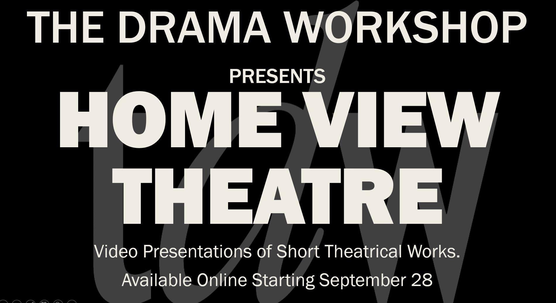 TDW_Home View Theatre logo